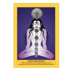 Postere 22 ipostaze Shiva